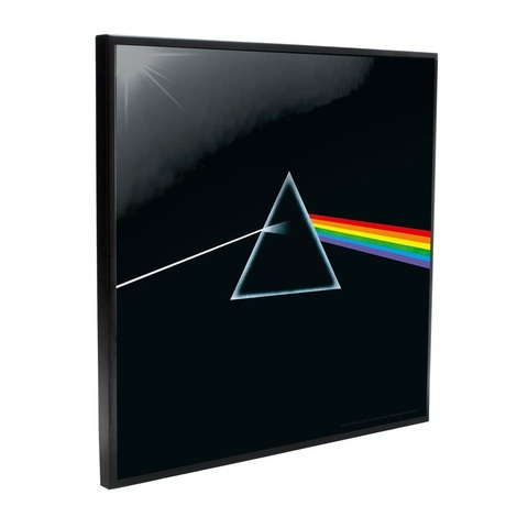 Pink Floyd Crystal Clear Picture Dark Side of the Moon 32 x 32 cm - NEMN-B4853P9