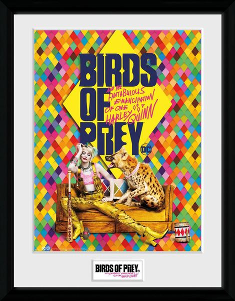Birds of Prey Framed Poster One Sheet Hyena - GYE-PFC3621